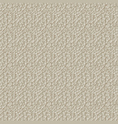 seamless pattern of skin texture vector image