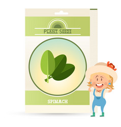 Pack of spinach seeds icon vector