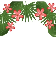 beautiful decoration floral background vector image
