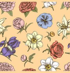 bouquet vintage flowers hand drawn sketch vector image vector image