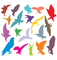 set of colorful eagle silhouettes-2 vector image