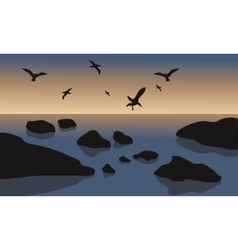 Silhouette of rock and bird in beach vector