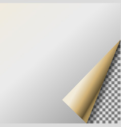 page curl with pearl transparent corner vector image vector image