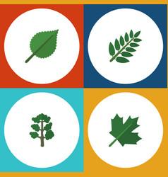 flat icon ecology set of acacia leaf oaken vector image