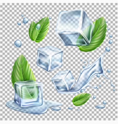 realistic ice cubes mint green leaves set vector image