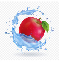 Red apple realistic fruit in water splash vector