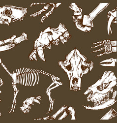 Sketchy prehistorical animals pattern archeology vector