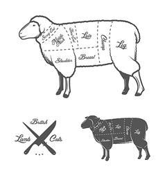 British cuts of lamb or mutton diagram vector image vector image