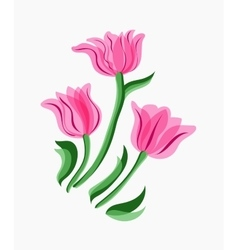 Bouquet of pink tulips vector image