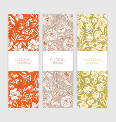 Collection of vertical floral backdrops or banners vector