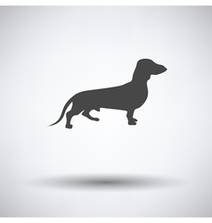 Dachshund dog icon vector