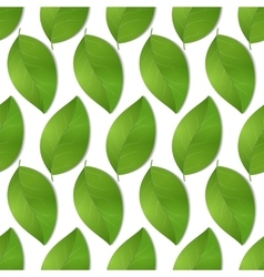 green seamless leaves vector image