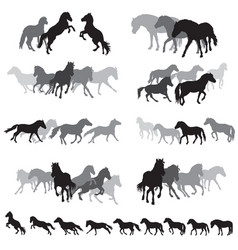 Groups of isolated horses silhouettes-3 vector
