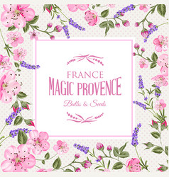lavender provence card vector image