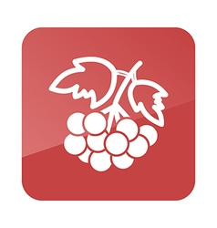 Rowan branch outline icon berry fruit vector