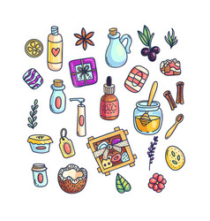 set of colorful aromatic items vector image