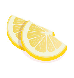 two ripe slices yellow lemon citrus fruit stand vector image