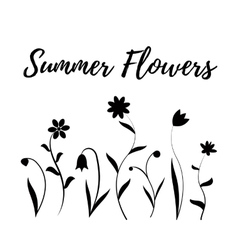 Summer flowers in black and white vector image vector image
