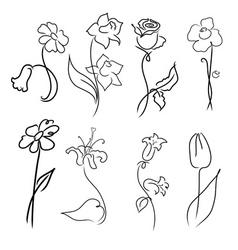 flowers design set vector image vector image