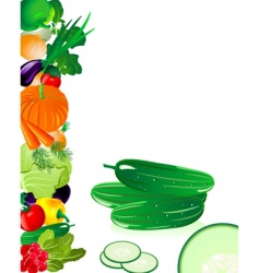 vegetables cucumber vector image vector image