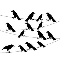 A flock of crows on the wire vector