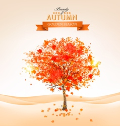 Autumn tree with orange leaves vector image