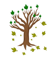 cartoon tree abort leaves vector image
