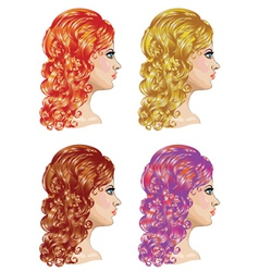 Curly Hairstyle2 vector