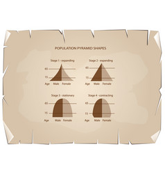 four types of population pyramids on old paper bac vector image
