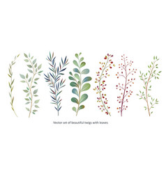 Handdrawn watercolour style nature vector
