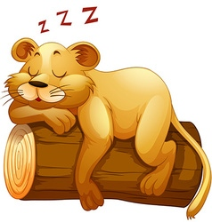 Little lion cup sleeping on the log vector