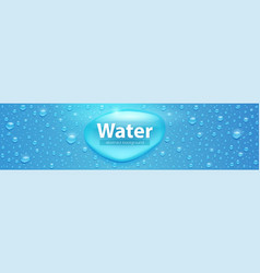realistic water drops on blue surface template vector image