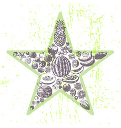 ink hand drawn fruits star vector image