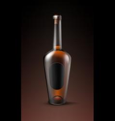 alcohol glass bottle vector image