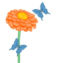 flower daisies and butterflies vector image