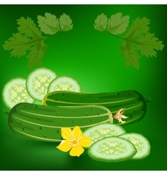 Cucumbers Healthy lifestile vector image