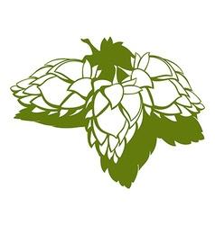 Hop flower Beer ingredient vector image