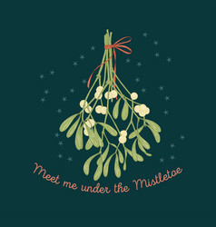 mistletoe greeting card on dark background vector image