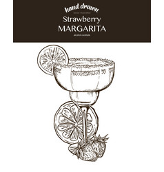 strawberry margarita composition vector image