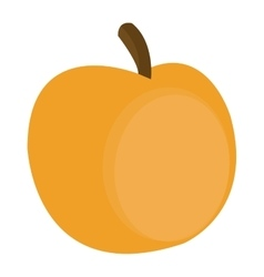 yellow apple icon vector image