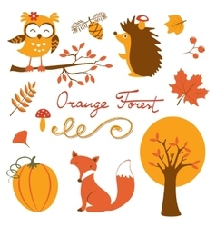 Orange forest colurful collection vector image vector image