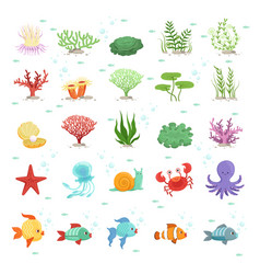 marine animals fishes collection and underwater vector image vector image