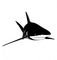 shark tattoo vector image vector image