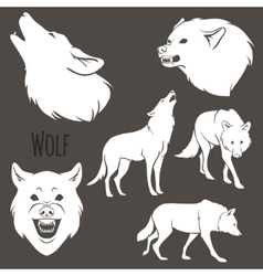 Grey Wolf Silhouette set vector image