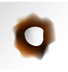 Big burnt hole on transparent background isolated vector