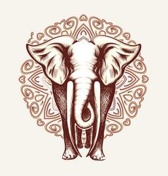 elephant on mandala background vector image