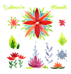 flowers watercolor elements vector image