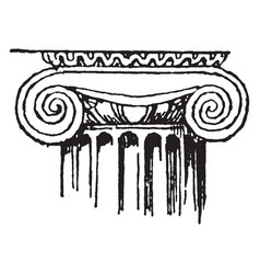 Ionic capital a ionic column vintage engraving vector