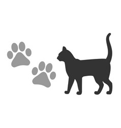 kitten footprints and silhouette a black vector image