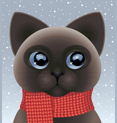 kitten wearing red scarf vector image